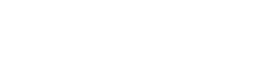Logo HNP Backstage